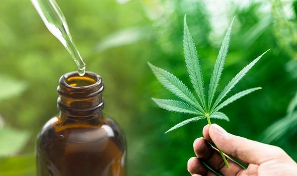 CBD Oil: Why You Must Not Buy the CBD Oil from the Stores